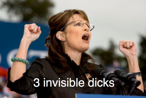 palin 3 invisible cocks